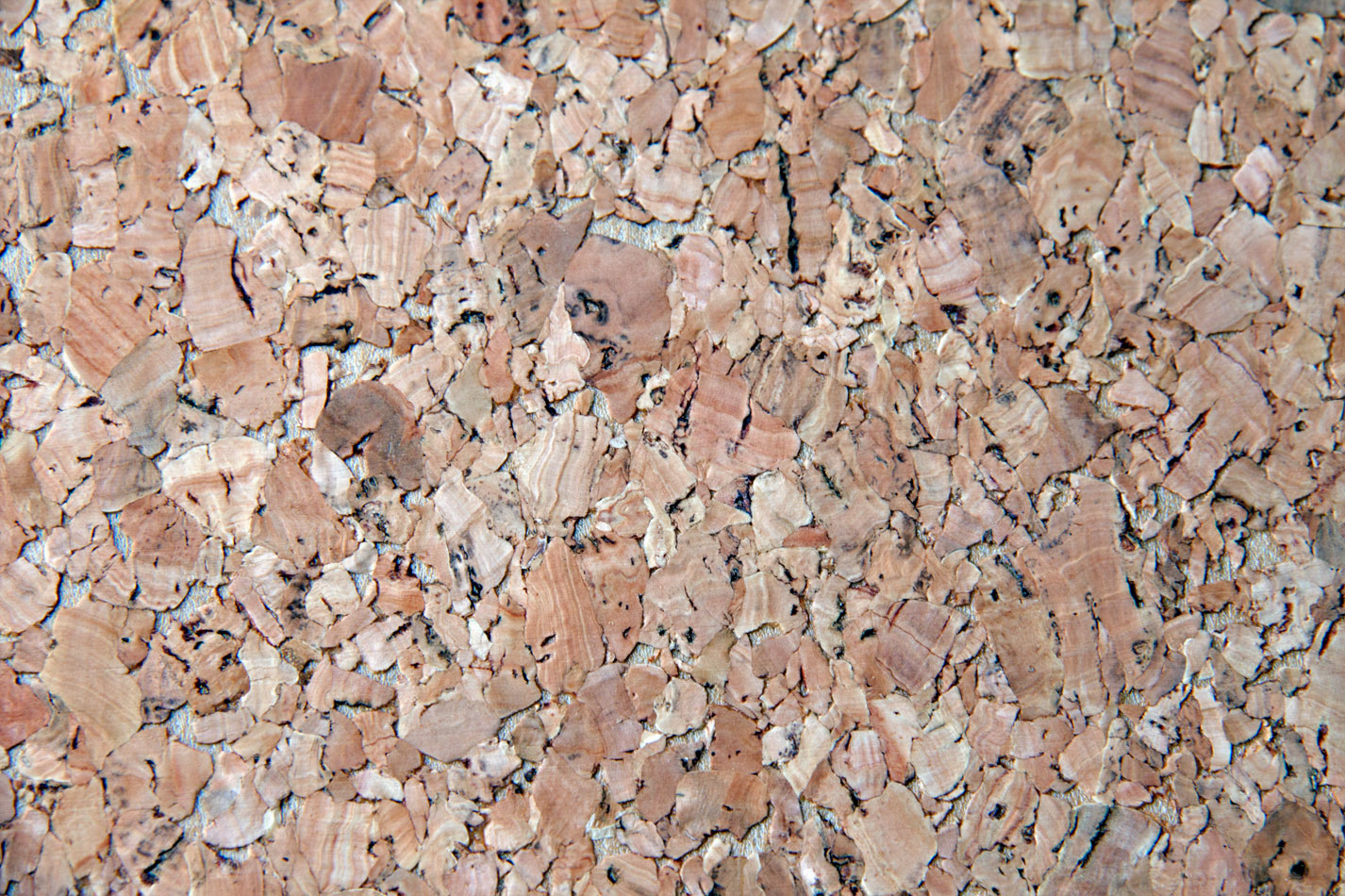 Cork Wallcovering